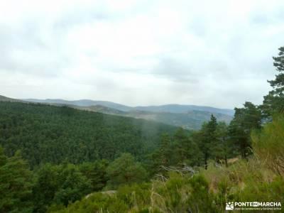 Canencia-Mojonavalle-Sestil de Maillo;sierra de cabrera bosque madrid subida a la bola del mundo par